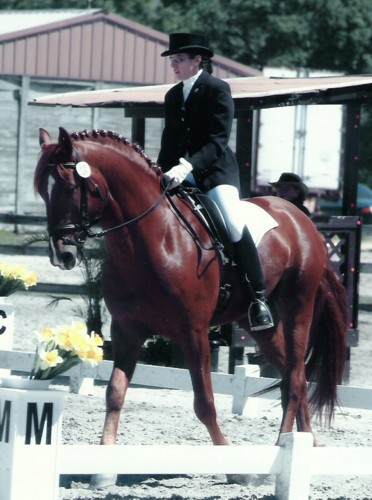 Gigha & Charleston, competing at Fox Lea, 2005